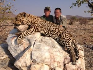 Leopard-Hunted-in-Kaokoland